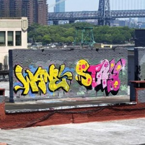 StayOne - Rooftop in Brooklyn