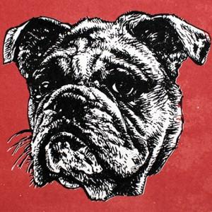 Jan Olav Forberg - Hund (rød variant)