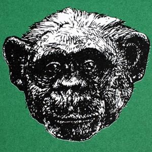 Jan Olav Forberg - Sjimpanse (grønn variant)