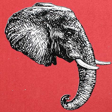 Jan Olav Forberg - Elefant (rosa variant)