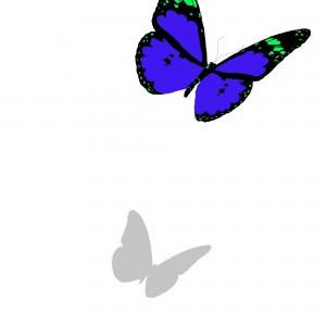 Sommerfugl_web