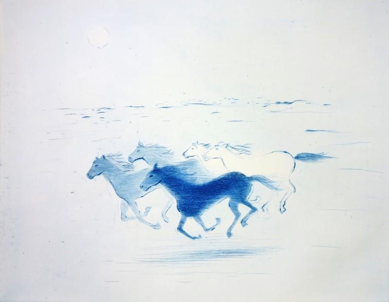 Villhester blå