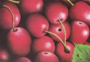 körsbær