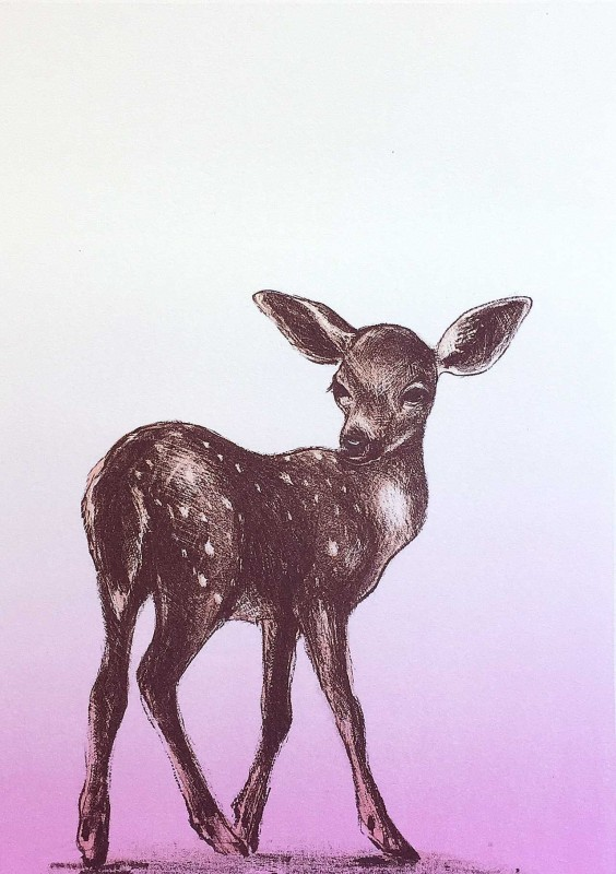 FAWN-pink-standing