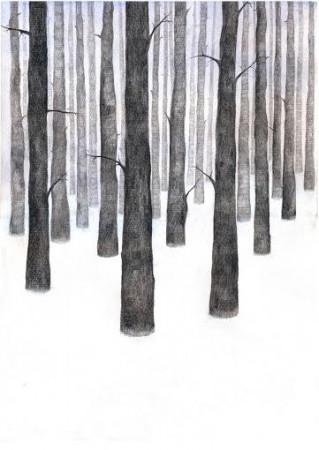 Vinterskog2