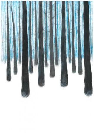 Vinterskog3