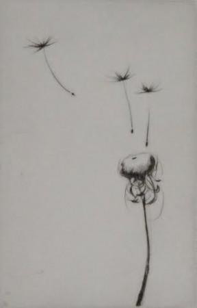 DandelionII