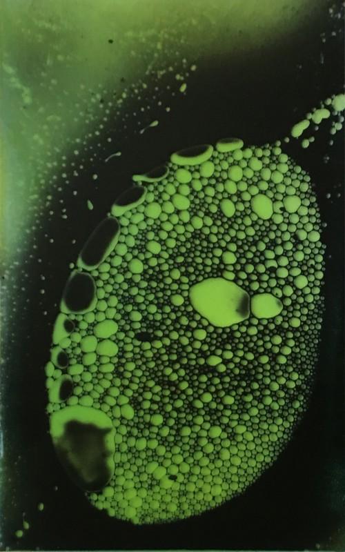 Mikrober 2