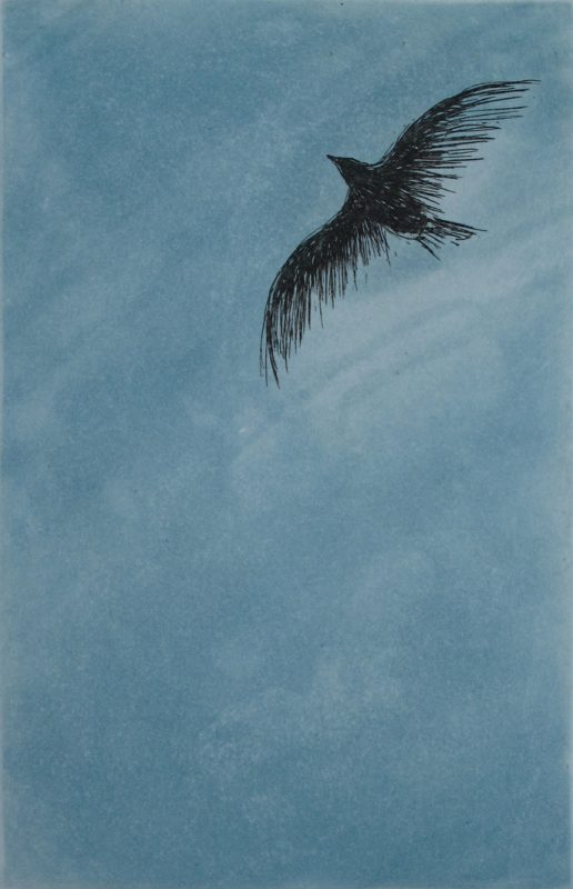 fri-som-fuglen-10x15cm