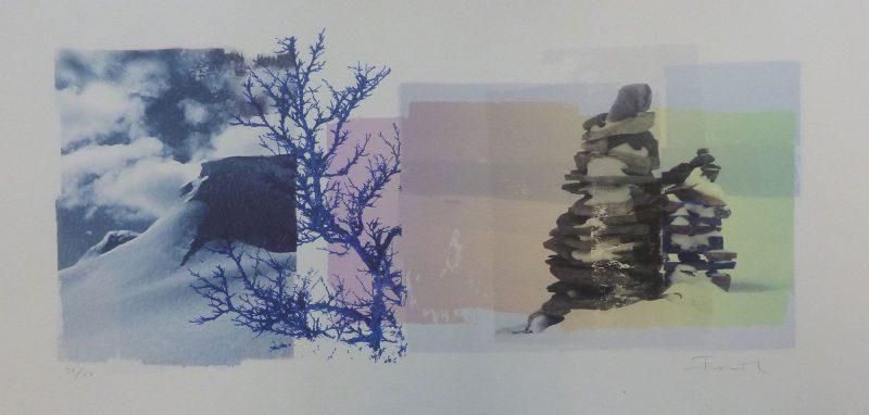 reservoir_blue-birch_setesdal
