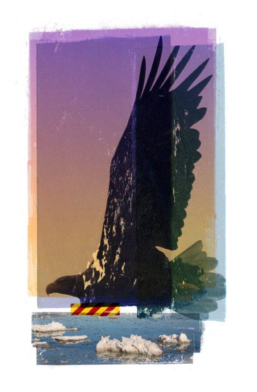 Aquila_River_Paris Accord_Lofoten_13-17