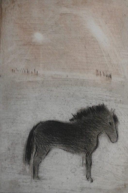 Liten hest