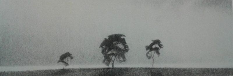 Tre trær
